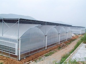 Construction of multi-span greenhouses